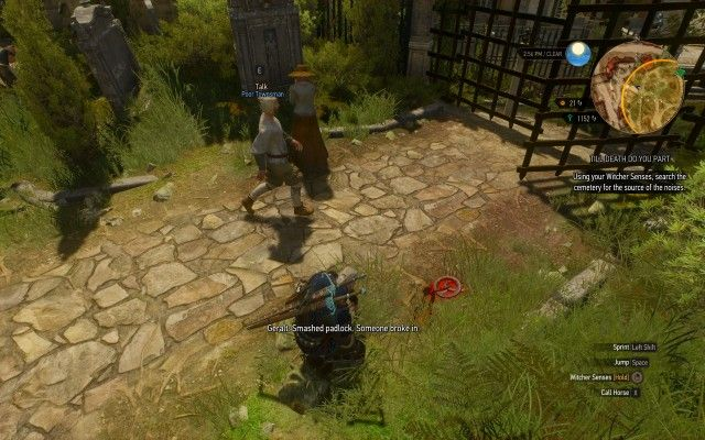 Using your Witcher Senses, search the cemetery for the source of the noises.