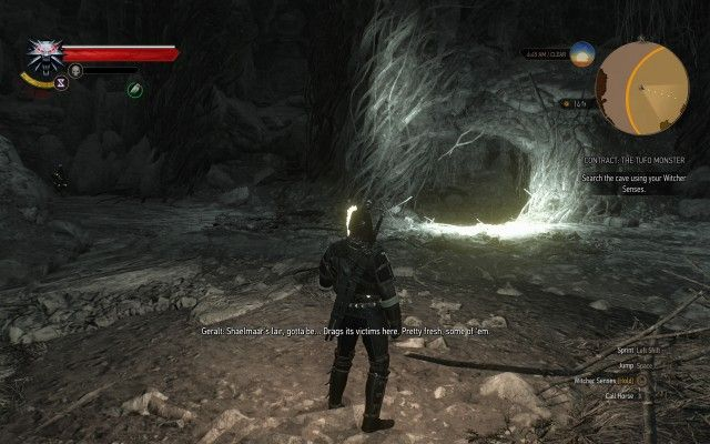 Search the cave using your Witcher Senses.