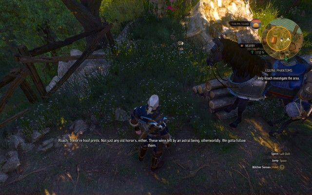 Use your Witcher Senses to examine the area.