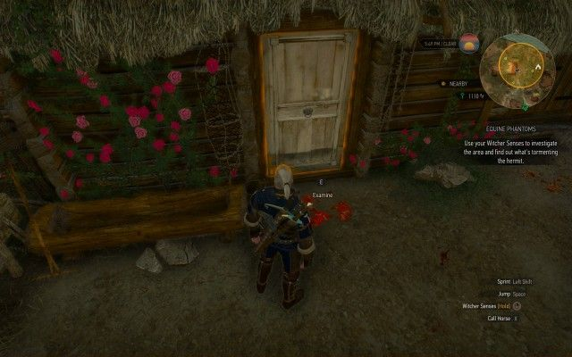 Use your Witcher Senses to investigate the area and find out what's tormenting the hermit.
